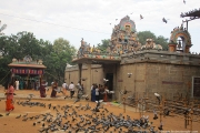 அருள்மிகு திருவல்லீஸ்வரர் திருக்கோவில், பாடி